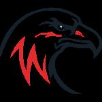 Legacy Surprise - Logo